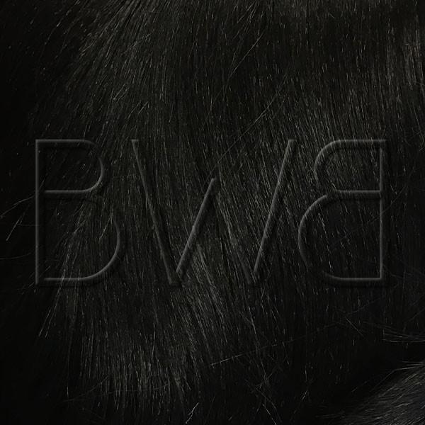 Teinte Sleek Hair - Beyonce - 1B