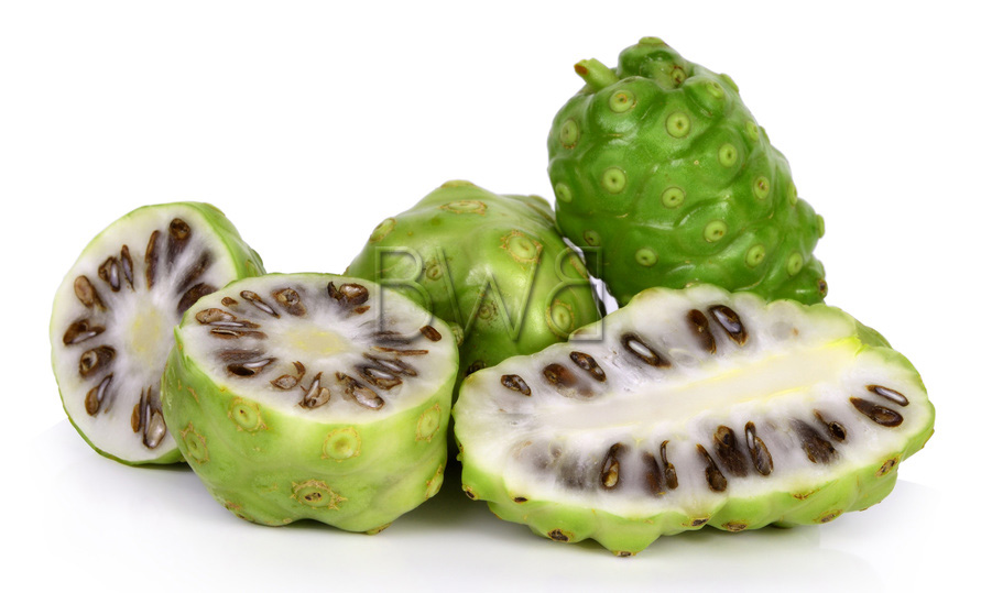 fruit tropical noni